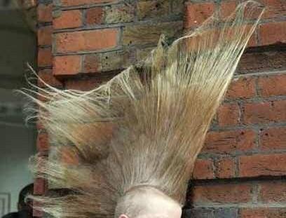 crazy-hair12[1]